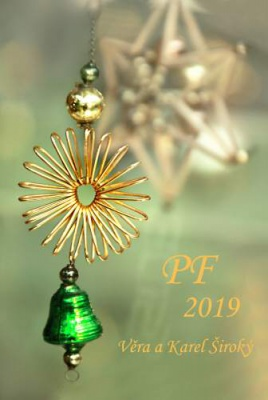 PF 2019_S